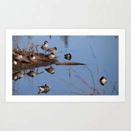 Naptime on the Willamette Art Print
