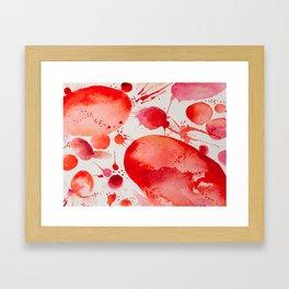 Pink Study Framed Art Print