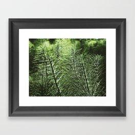 Sentinel Green Framed Art Print