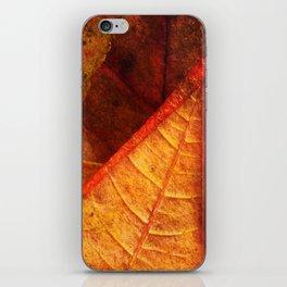 Cycle II Autumn Seasonal Modern ART Design  iPhone Skin