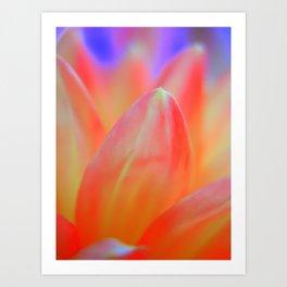 Dreamy Orange Petals Art Print