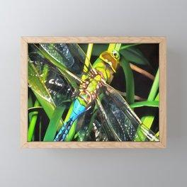 Blue Dragonfly Wings Framed Mini Art Print