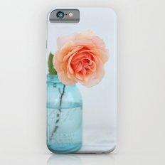 Rose in a Jar Slim Case iPhone 6s