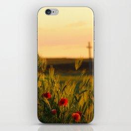Poppy fields  iPhone Skin