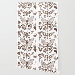 Natural History (Brown) Wallpaper