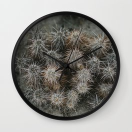Monochrome Cactus in Joshua Tree National Park, California Wall Clock