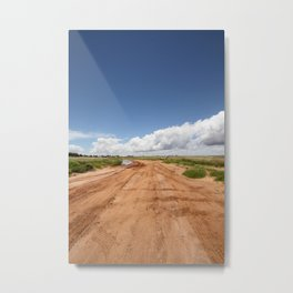 Pretty Pool Mud Flats Metal Print