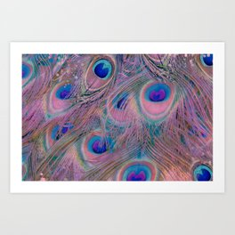 Sugar Peacock Feathers Art Print