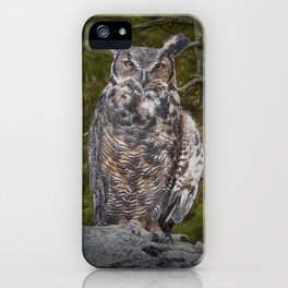 Portrait of a Great Horned Owl iPhone Case