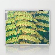 Woodland Fern Laptop & iPad Skin