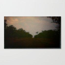 home /4 Canvas Print