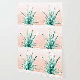 Desert Succulent Aloe Vera Wallpaper