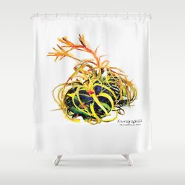 Tillandsia Xerographica Air Plant Watercolor Shower Curtain