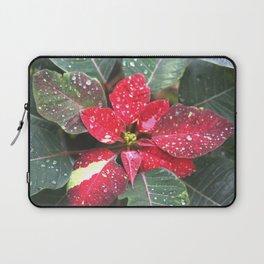 Raindrops on a poinsettia Christmas flower Laptop Sleeve