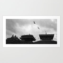 From Their Distant Flight Art Print