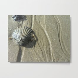 Scallop Edge Metal Print