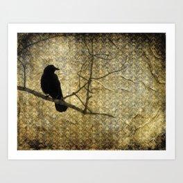 Crow Of Damask Art Print