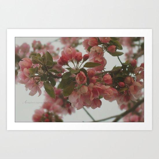 Spring Harmony Art Print
