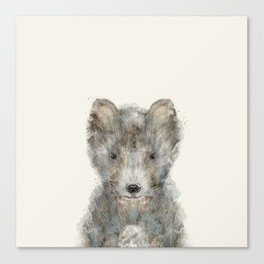 little wolf Canvas Print