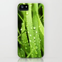 Rain drops, tall green grass, macro rain, plants, nature iPhone Case