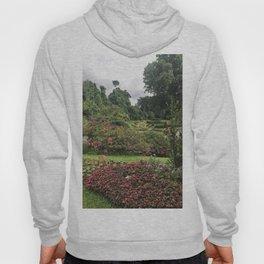 Stormy Garden Hoody