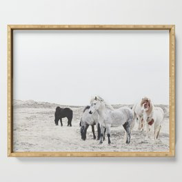WILD AND FREE  1 - HORSES OF ICELAND Serving Tray