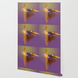 dancing angle Wallpaper