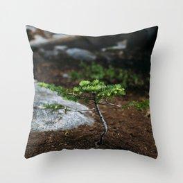 New Growth // California Throw Pillow