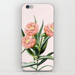 Blush Cactus || #society6 #decor #buyart iPhone Skin
