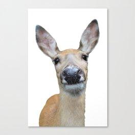 Doe a deer Canvas Print