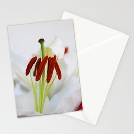 A Whisper of Red Stationery Cards