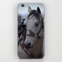 Horse in bridle iPhone Skin