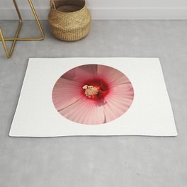 Pink Hibiscus Close-up Flower Photography Rug