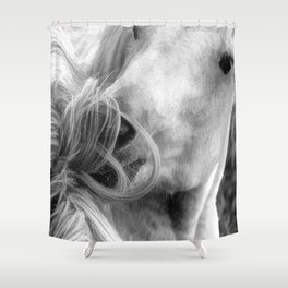 Horse Grooming Shower Curtain