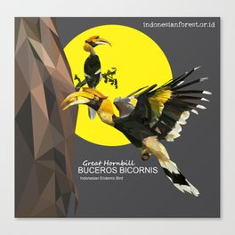 bucheros bicornis Canvas Print