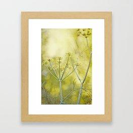 Through the Dill Framed Art Print