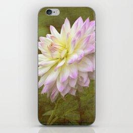 White Purple Dahlia iPhone Skin