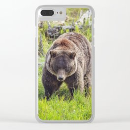 Grizzly Bear 0295v04 Clear iPhone Case