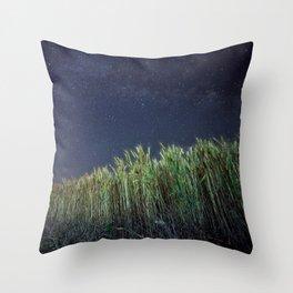 Wheat Field Planetarium Throw Pillow