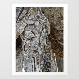 wood skin Art Print