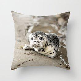 Baby Seal Pup On Sandy Beach Throw Pillow