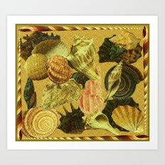 Shells of Sound Art Print
