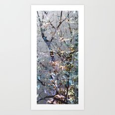 Winter Melody Art Print