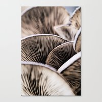 mushrooms Canvas Prints featuring Mushrooms by Kathy Dewar