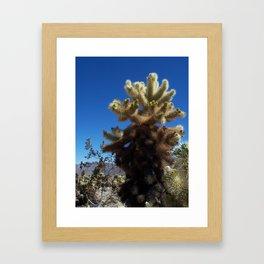 'Teddy Bear' Cactus Framed Art Print