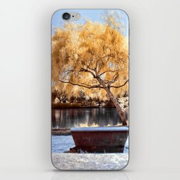 Autumn Colors Bench iPhone Skin