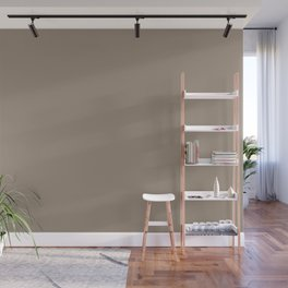 Chocolate Mousse Brown Solid Color Pairs with Sherwin Williams Heart 2020 Forecast Color Cocoa Whip Wall Mural