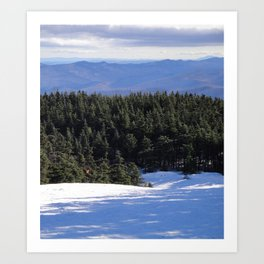 VT Trail Art Print