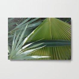 Florida Greens Metal Print