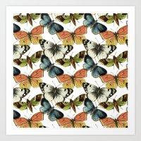 Butterflies and Moths pattern Art Print